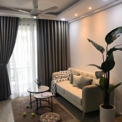 CAN-HO-2PN-CHO-THUE-SAIGON-SOUTH-RESIDENCE-1